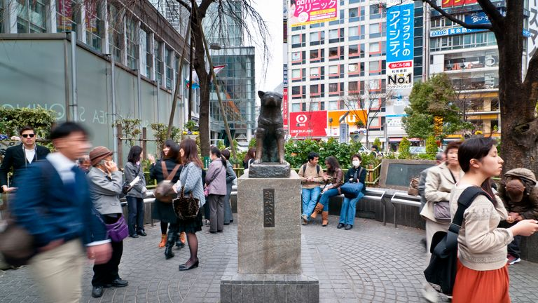 The story and statue of Hachiko continues to inspire the people of Japan, for whom loyalty and honour is principal