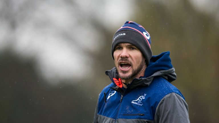 Nathan Grey worked under Michael Cheika as Australia's defence coach