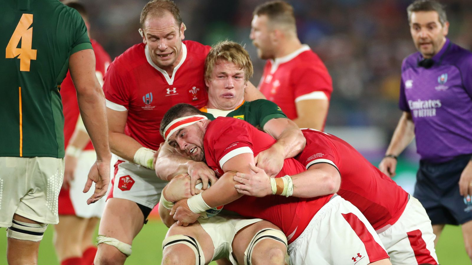 Wales to face world champions South Africa in November Test - Sky Sports