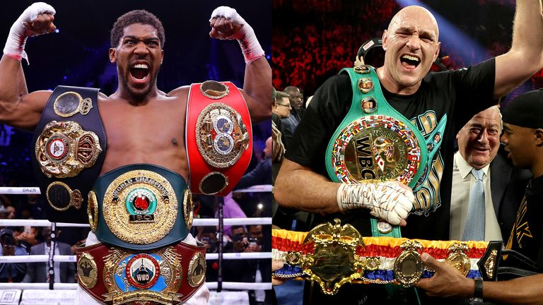 Anthony Joshua had targeted an undisputed world title fight with Tyson Fury