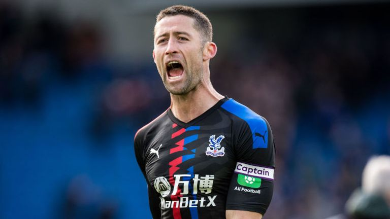 Gary Cahill has added some valuable experience at the heart of Palace's defence