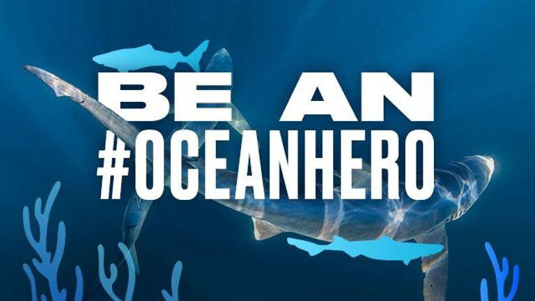 Become an Ocean Hero by posting your #OceanSelfie