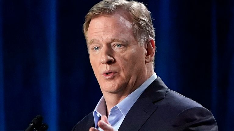 NFL Commissioner Roger Goodell said more progress needed to be made in head coach diversity