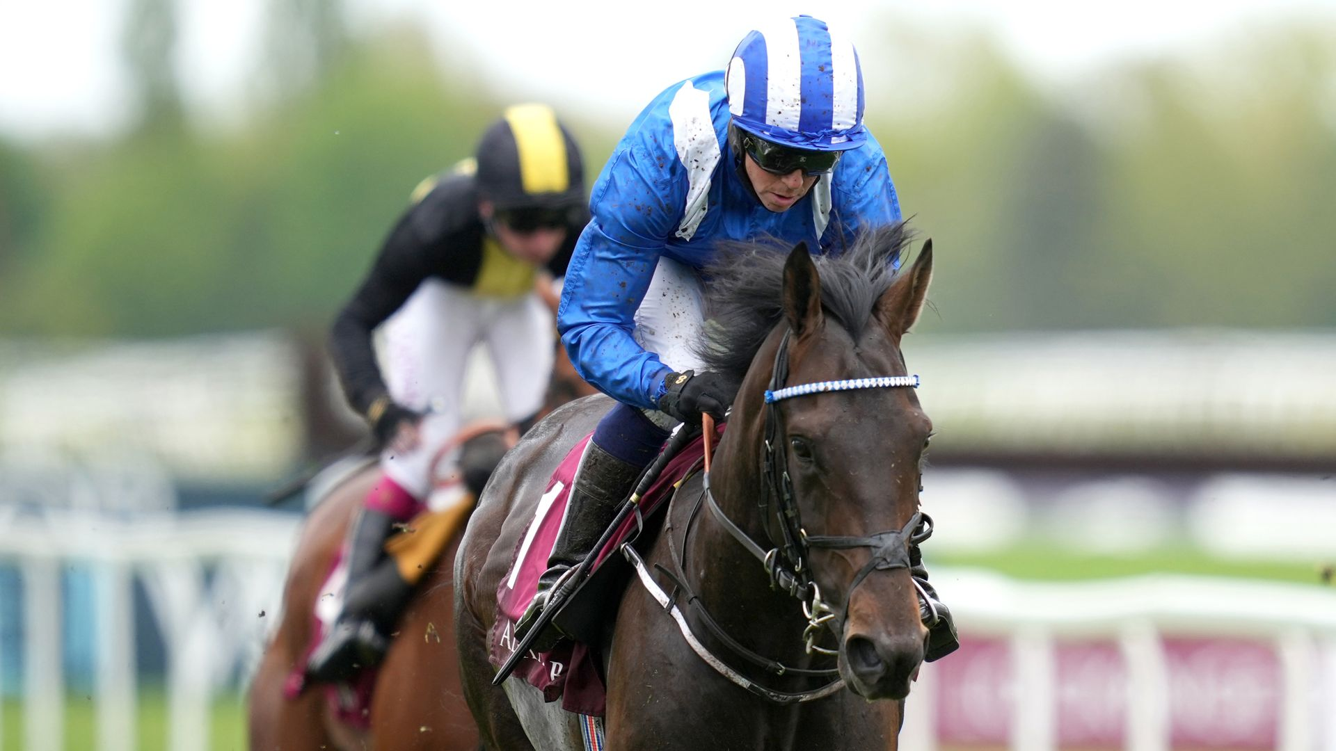 So easy for Al Aasy at Newbury