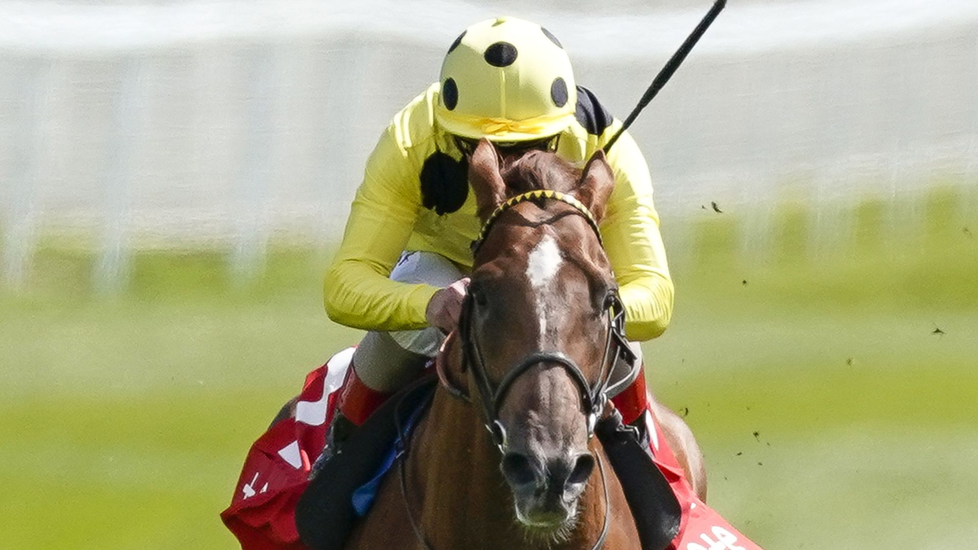El Drama wins Dee Stakes at Chester - sky sports