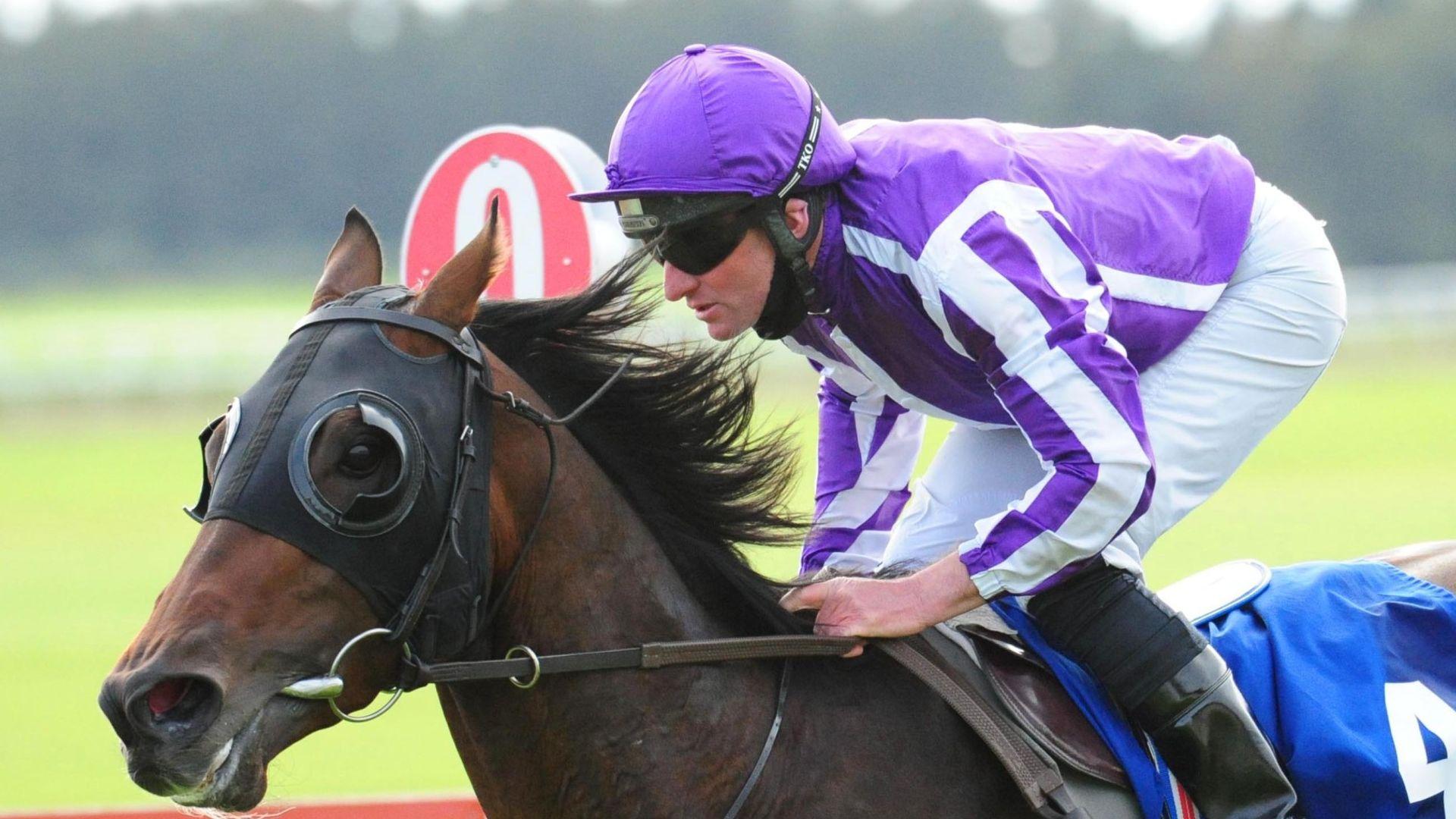 Order Of Australia suffers career-ending injury