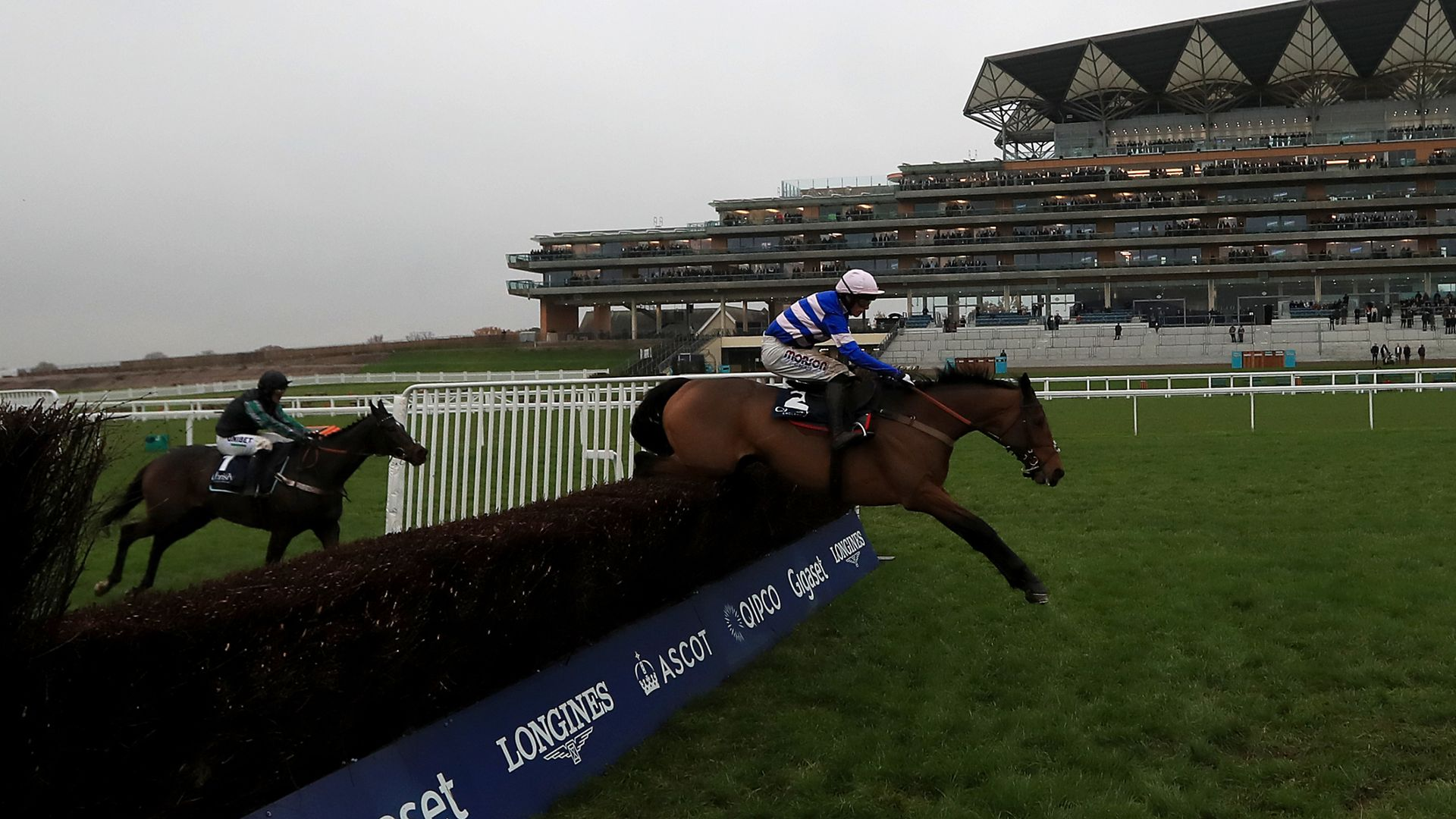 Cyrname tops Charlie Hall Chase contenders