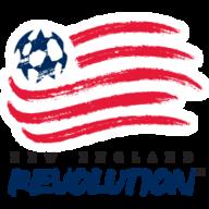 NE Revolution badge